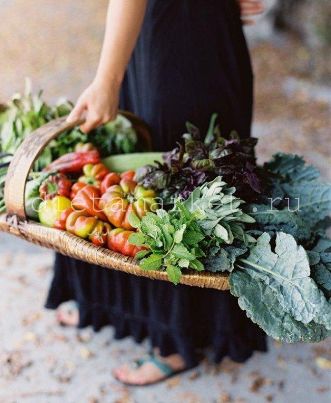 Рецепты для щелочной диеты